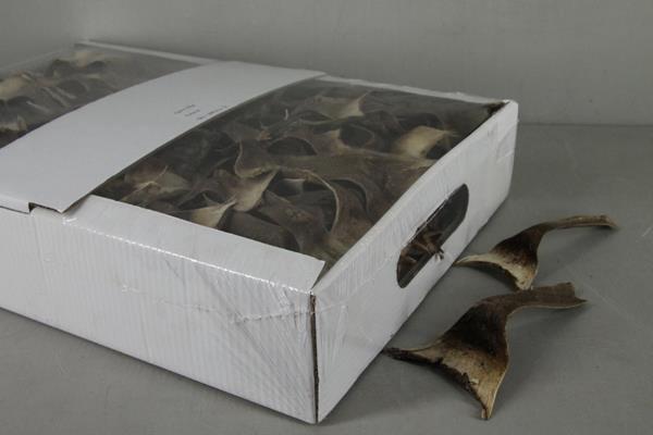 <h4>Dd Agave Mini Natural Box</h4>
