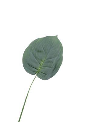 <h4>Af Hosta Leaf Single 23''</h4>