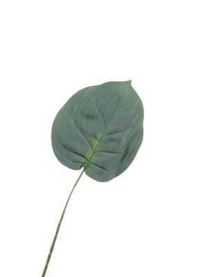 <h4>Af Hosta Leaf Single 23''</h4>