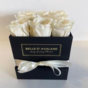 Box vk 15cm zwart-champagne
