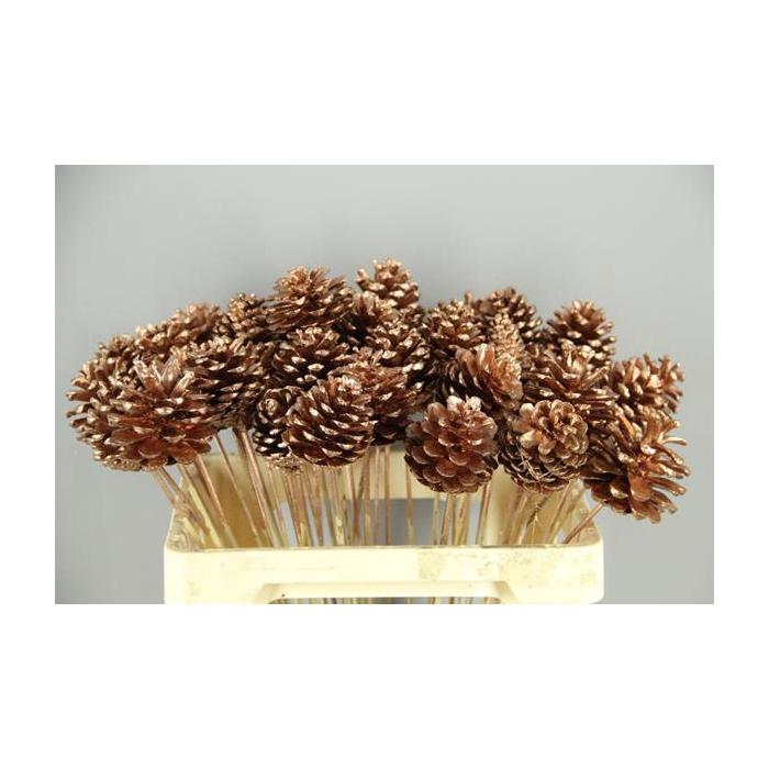 <h4>Stick Pine Cone Copper</h4>