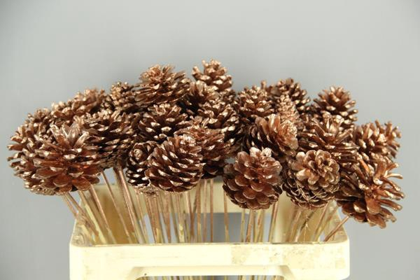 <h4>Stick Pine Cone Copper</h4>