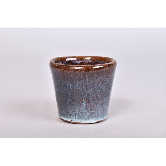<h4>Alicante Lichtblauw Pot 9x8cm</h4>