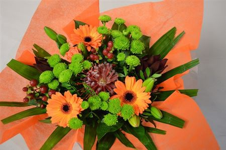 <h4>Bm Stof Oranje</h4>