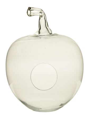 <h4>Apple glass 29x38 clear</h4>