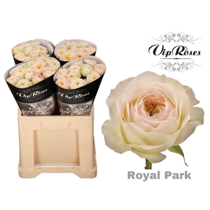 R GR ROYAL PARK
