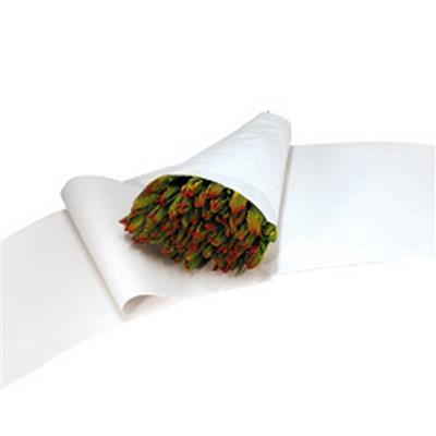 <h4>Feuille en papier- 35x85cm 45gr Ersatz - Courbé</h4>