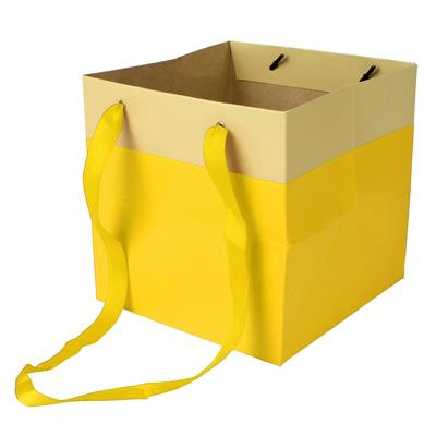 <h4>Bag Facile carton 16x16x16cm yellow</h4>