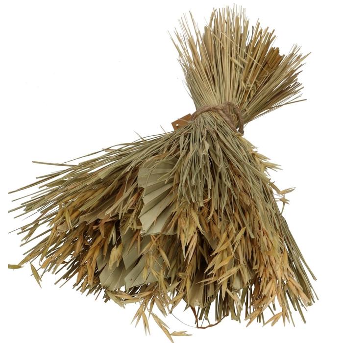 <h4>Droogbloem Palmspear 30*45cm</h4>