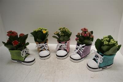 <h4>2904 Nike Schoen</h4>