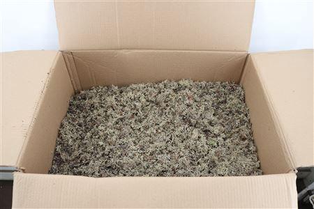 <h4>Reindeer Moss 15kg Natural B</h4>