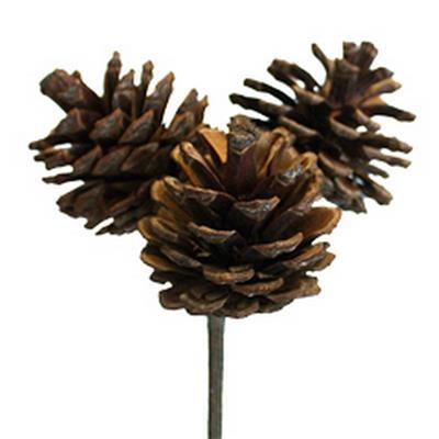 <h4>Pique Cône du pin 3x3,5cm+bâton 50cm naturel</h4>