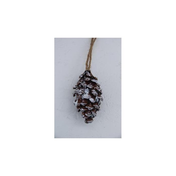<h4>Pine Cone 11cm Hanging</h4>