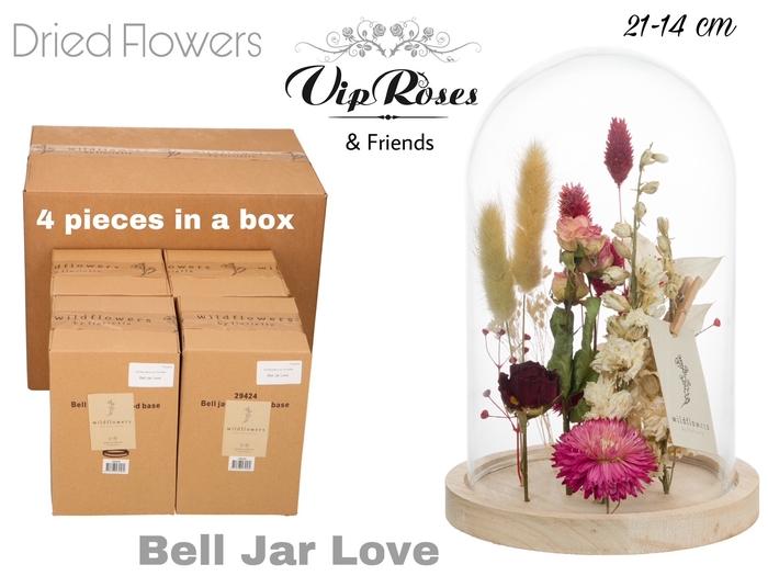 <h4>Vip Dried Bell Jar Love</h4>