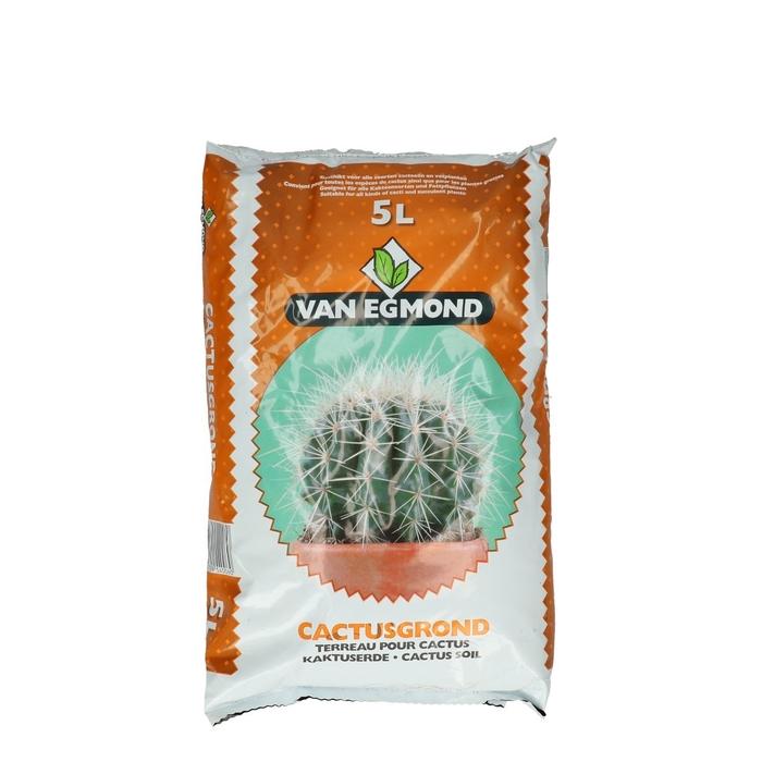<h4>Bodemverzorging Cactusgrond  5L</h4>