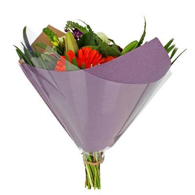 <h4>Housses 35x35cm Oblique OPP60/80gr kraft violet</h4>