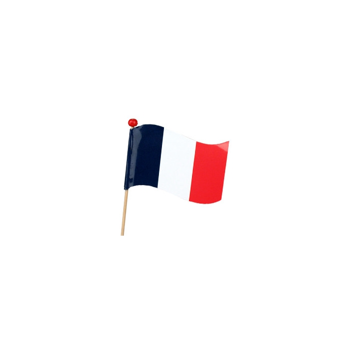 <h4>Bijsteker 50cm Vlag Frankrijk 10*15cm</h4>