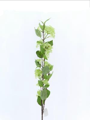 <h4>Af Wild Berry Spray Green</h4>