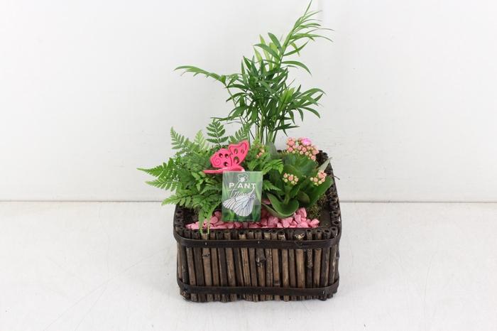 <h4>arr. PL - Bamboe 4kant 401/2 - roze</h4>