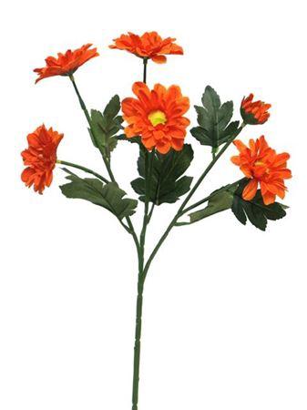 <h4>Chrysantemum westland 60cm ora</h4>