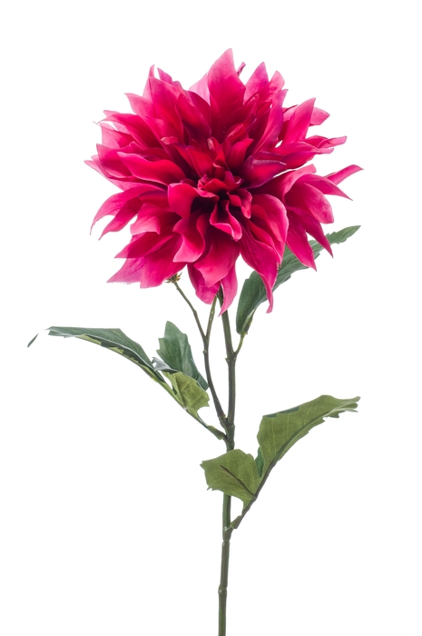 <h4>SILK DAHLIA SPRAY 60CM FUCHIA 421898</h4>