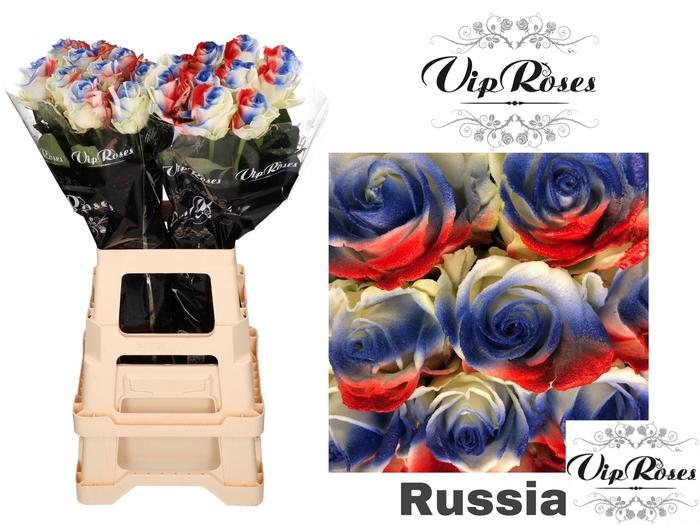<h4>R GR FLAG RUSSIA</h4>