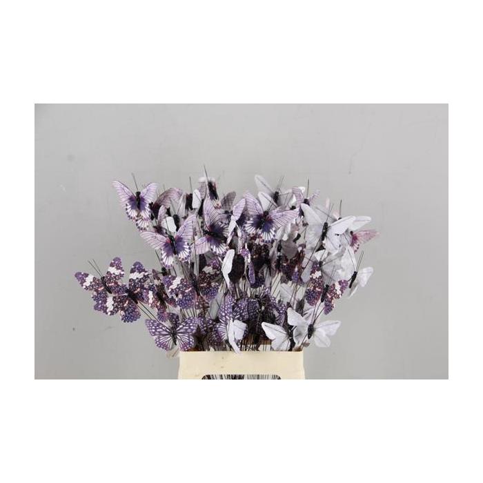 <h4>Stick Butterfly Bouquet Grey</h4>