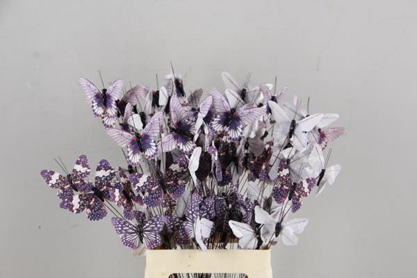 <h4>Stick Butterfly Bouquet Grey</h4>
