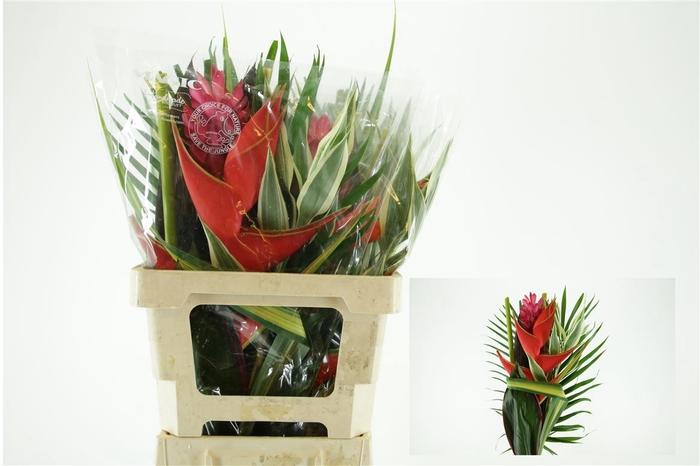 <h4>Bouquet 1 H (mg)</h4>