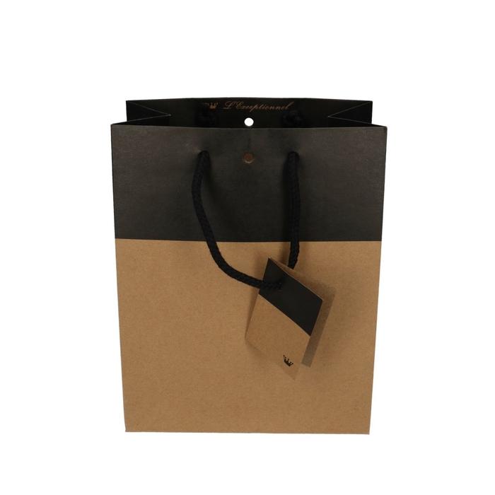 <h4>Tassen Gift bag duo 10/18*22cm</h4>