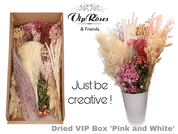 <h4>DRIED VIP BOX PINK & WHITE</h4>