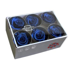 Roos standard d.blauw
