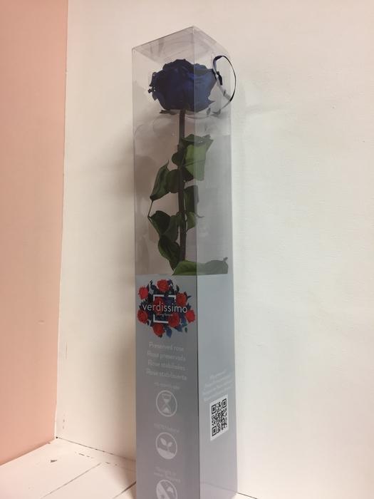 <h4>Roos op steel  xl Plexi 55cm Dark blue</h4>
