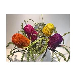 Banksia Tint Mix