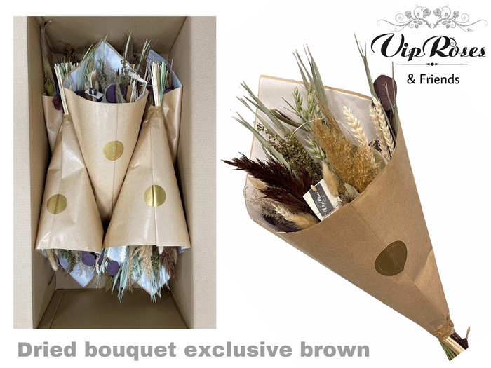 <h4>DRIED BOUQUET EXCLUSIVE BROWN</h4>