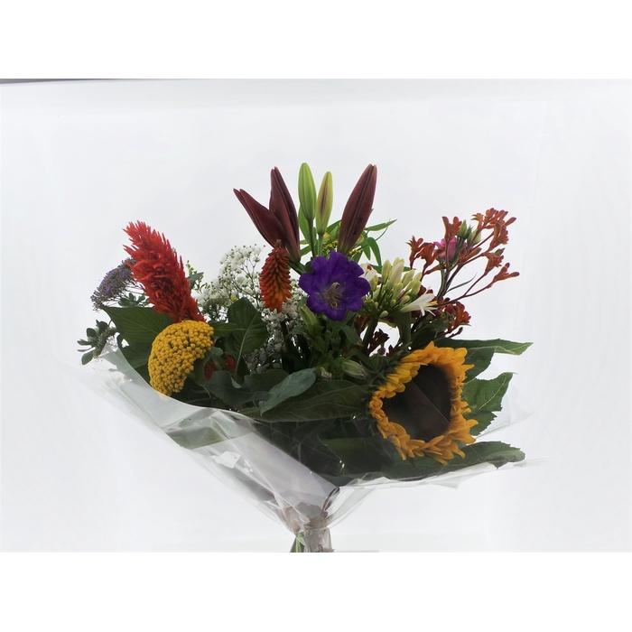 <h4>Bouquet Field Roxy</h4>