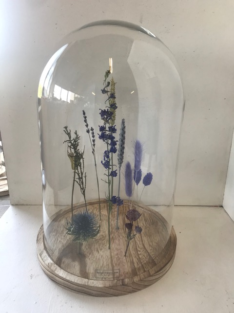 Stolp XL Dried Flowers