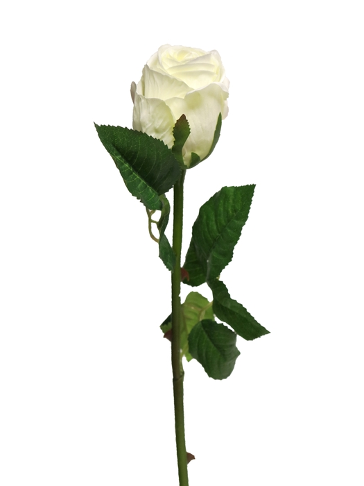 <h4>SILK EQUADOR ROSE BUD WHITE 60CM 13041-0</h4>