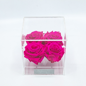 Plexi 12.5cm fuchsia rozen