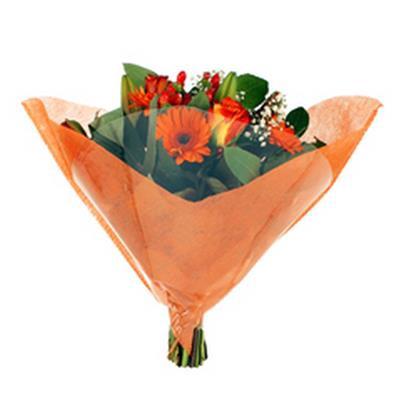 <h4>Housse 51x51cm Shape OPP40/short fibre orange</h4>