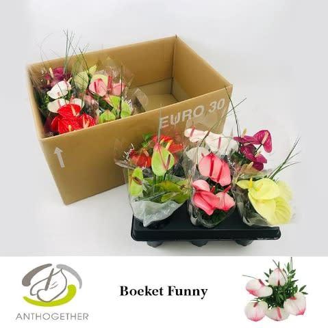 <h4>Funny Boeket 5 bloem 12.</h4>