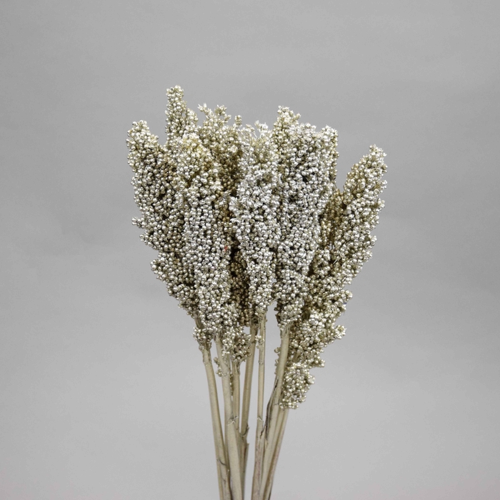 <h4>Dried Sorghum Aar Platinum</h4>