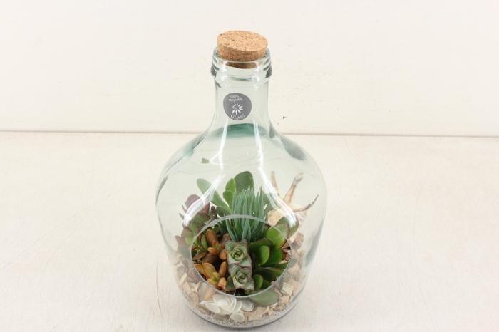 <h4>arr. WD Z6 - Glas fles met kurk</h4>
