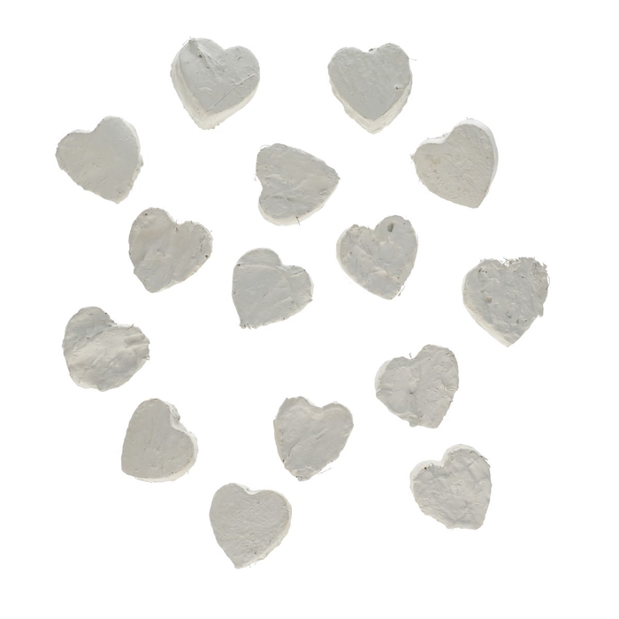 <h4>Dried articles Heart Coco 5cm x50</h4>