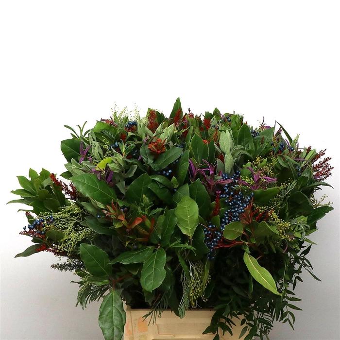 <h4>Bouquet De Provence Super</h4>