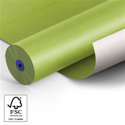 <h4>Papier 50cm Kraft blanc 50 gr Vert lime 400m.</h4>