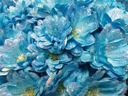 <h4>Chr T Bacardi Light Blue + Glit</h4>