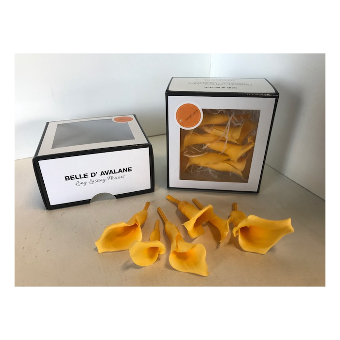 <h4>Calla Geel (yellow700)</h4>