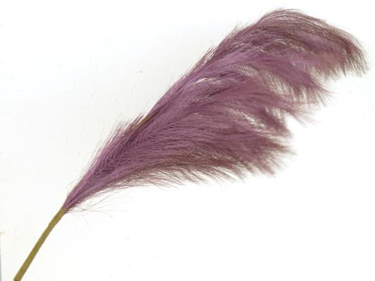 <h4>Af Pampas 130cm Purple</h4>
