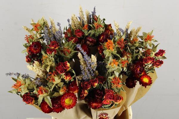 <h4>Df Bouquet 50cm Dutch Orange</h4>